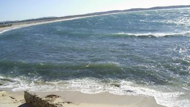 Surf report FR, L'Almanarre (83) du 2008-03-17 12:00:00