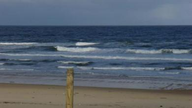 Surf report FR, Seignosse - Les Bourdaines (40) du 2008-04-14 12:00:00