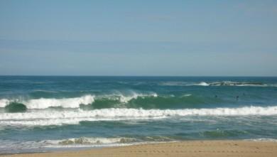 Surf report FR, Biarritz - Grande Plage (64) du 2008-04-29 12:00:00