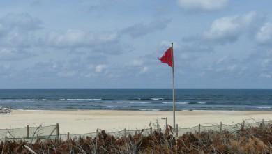 wave report FR, Mimizan - Plage Sud (40) du 2008-05-19 12:00:00