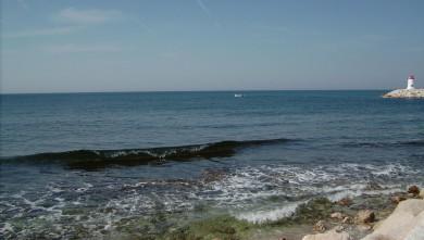wave report FR, Sausset les Pins - Plage du Port (13) du 2008-05-22 12:00:00