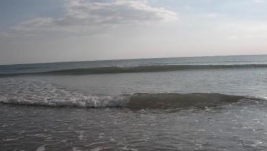 Surf report FR, La Gachère (85)