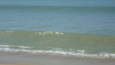 wave report FR, La Turballe  (44) du 2009-08-23 11:00:00