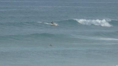 Surf report FR, Mimizan - Plage Garluche (40) du 2009-10-05 17:00:00