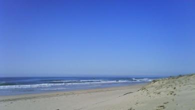 Surf report FR, Cap-Ferret - Plage de L'Horizon (33) du 2009-11-18 13:00:00