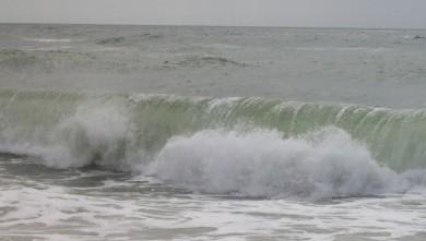 wave report FR, Le Trillou (17) du 2009-09-05 14:00:00