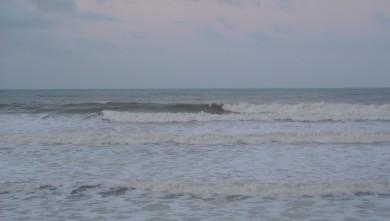 Surf report FR, Grand Village (17) du 2009-01-14 12:00:00