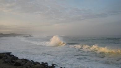 Surf report FR, Capbreton - Le Santosha (40) du 2009-01-16 12:00:00
