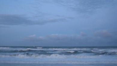 Surf report FR, Capbreton - Le Santosha (40) du 2009-01-20 12:00:00