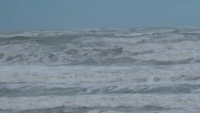 wave report FR, Grand Village (17) du 2009-01-20 12:00:00