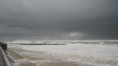 Surf report FR, Capbreton - Le Santosha (40) du 2009-01-21 12:00:00