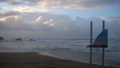 Surf report FR, Biarritz - Grande Plage (64) du 2009-01-26 12:00:00