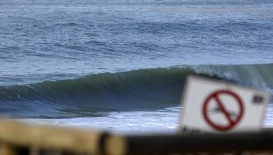 Surf report FR, Hossegor - La Gravière (40) du 2009-01-30 12:00:00