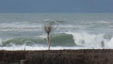 Surf report FR, Hossegor - La Gravière (40) du 2009-02-07 12:00:00