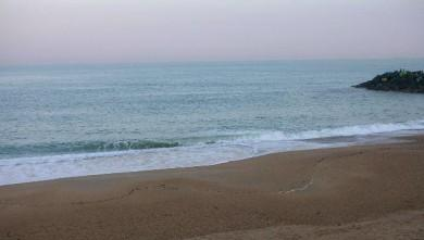 wave report FR, Anglet Surf Club (64) du 2009-02-16 12:00:00
