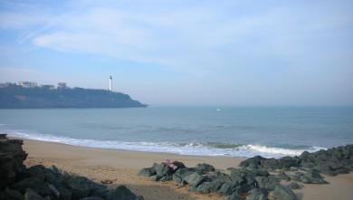 Surf report FR, Anglet VVF (64) du 2009-02-28 12:00:00