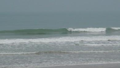 Surf report FR, Grand Village (17) du 2009-03-01 12:00:00