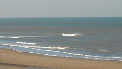 Surf report FR, Grand Village (17) du 2009-03-20 12:00:00
