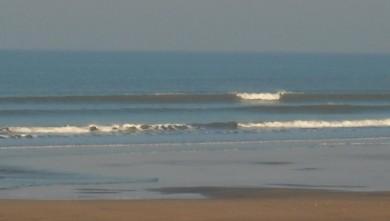 wave report FR, Grand Village (17) du 2009-03-22 12:00:00