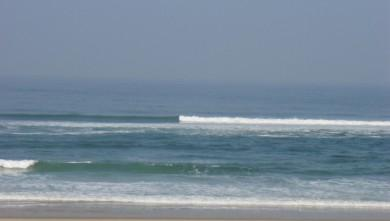 Surf report FR, Seignosse - Les Bourdaines (40) du 2009-03-23 12:00:00