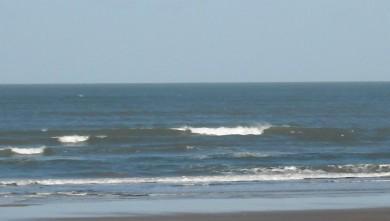 wave report FR, Grand Village (17) du 2009-03-24 12:00:00