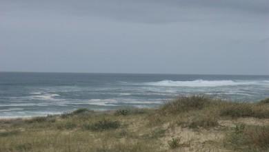 Surf report FR, Hossegor - La Nord (40) du 2009-04-08 12:00:00