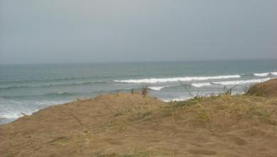 Surf report FR, Grand Village (17) du 2009-05-12 12:00:00