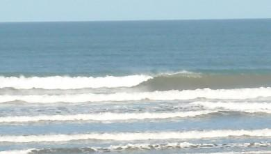 Surf report FR, Grand Village (17) du 2009-06-20 12:00:00