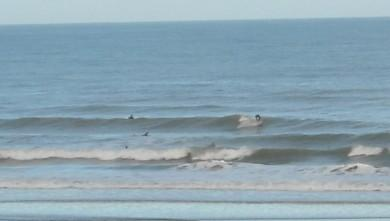 Surf report FR, Grand Village (17) du 2009-07-20 12:00:00