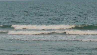wave report FR, Le Trillou (17) du 2009-08-20 08:30:00