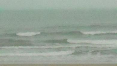 wave report FR, Le Trillou (17) du 2009-09-01 08:30:00
