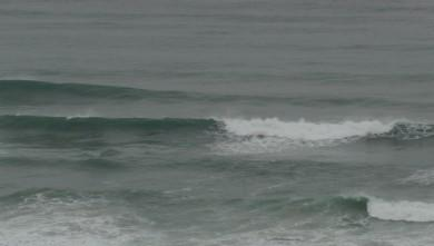 wave report FR, Marbella (64) du 2009-09-02 10:00:00