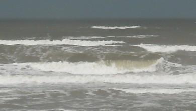 wave report FR, Le Trillou (17) du 2009-09-03 08:30:00