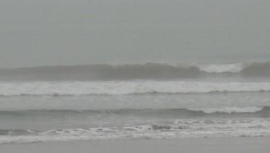 wave report FR, Le Trillou (17) du 2009-09-17 08:30:00