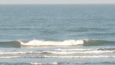 wave report FR, Le Trillou (17) du 2009-09-19 08:30:00