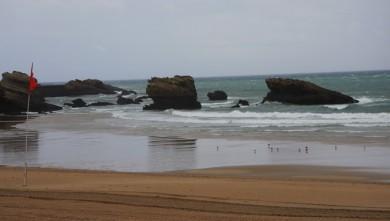 wave report FR, Biarritz - Grande Plage (64) du 2009-09-19 10:30:00