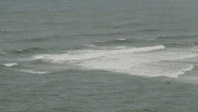 wave report FR, Lafiténia (64) du 2009-09-19 15:00:00