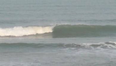 wave report FR, Le Trillou (17) du 2009-09-21 09:00:00