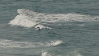 wave report FR, Marbella (64) du 2009-09-26 14:00:00