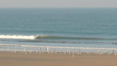 wave report FR, Le Trillou (17) du 2009-09-29 08:30:00