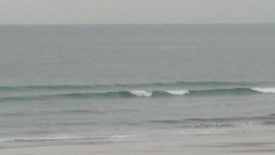 wave report FR, Le Trillou (17) du 2009-10-02 08:40:00