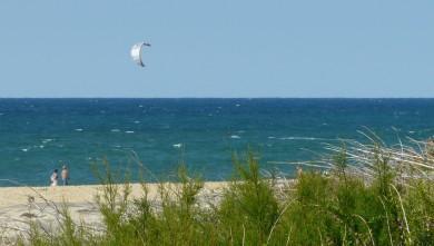 Surf report FR, Mimizan - Plage Garluche (40) du 2009-10-02 16:15:00