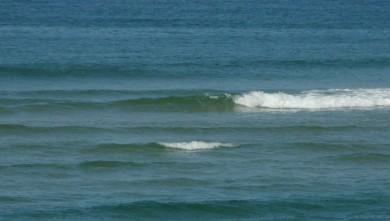 wave report FR, Mimizan - Plage Garluche (40) du 2009-10-03 12:40:00