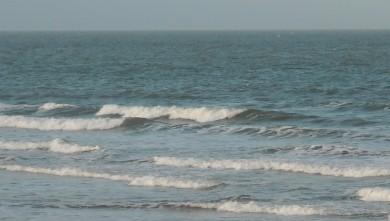 Surf report FR, Le Trillou (17) du 2009-10-10 08:30:00
