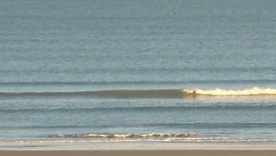 Surf report FR, Le Trillou (17) du 2009-10-15 09:00:00