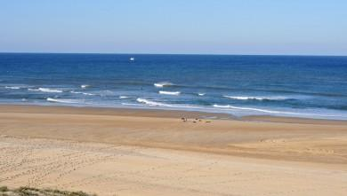 Surf report FR, Seignosse - Les Bourdaines (40) du 2009-10-15 05:00:00
