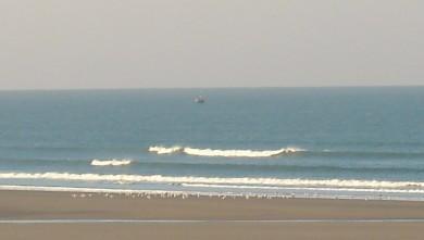 wave report FR, Le Trillou (17) du 2009-10-16 09:00:00