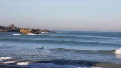 Surf report FR, Biarritz - Grande Plage (64) du 2009-10-27 09:50:00