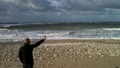 Surf report FR, Les Huttes - Trois Pierres (17) du 2009-11-08 10:08:00