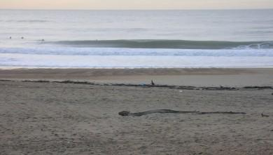 wave report FR, Anglet Sables d'Or (64) du 2009-11-12 17:00:00